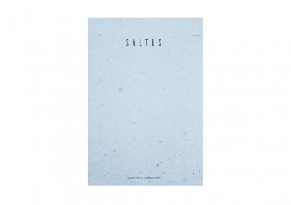 Notebook Saltus